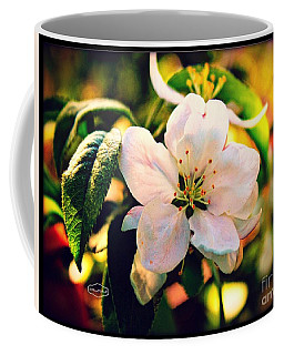 Mock Orange Flower  Copyright Mary Lee Parker 17,  Coffee Mug by MaryLee Parker