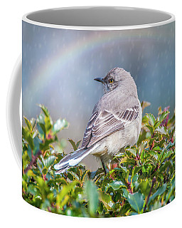 Mockingbird Rainbow Coffee Mug