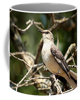 Mockingbird  Coffee Mug by Sheila Brown