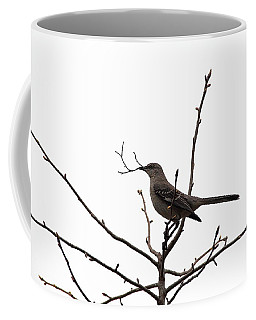 Mockingbird With Twig Coffee Mug
