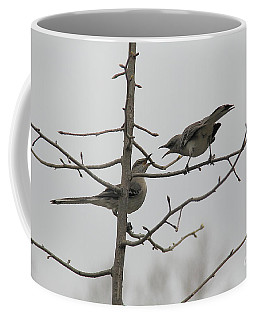Mockingbirds Talk It Out Coffee Mug