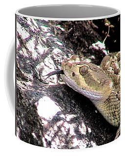 Mojave Rattlesnake 5 Coffee Mug