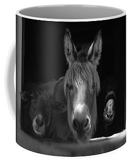 Coffee Mug featuring the photograph Molly And Friends  by Wayne King