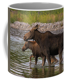 Coffee Mug featuring the photograph Mom And Baby Moose River Crossing by Mary Hone