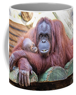 Mom And Baby Orangutan Coffee Mug by Stephanie Hayes