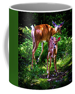 Coffee Mug featuring the photograph Mom And Fawn by David Patterson