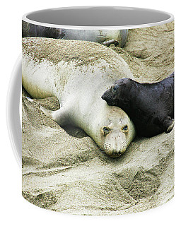 Coffee Mug featuring the photograph Mom And Pup by Anthony Jones