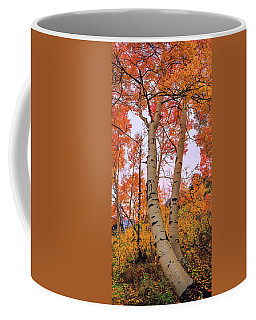 Moments Of Fall Coffee Mug