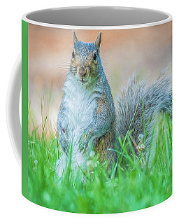 Momma Squirrel Coffee Mug