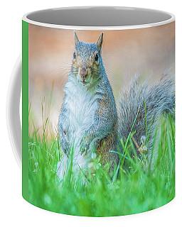 Momma Squirrel Coffee Mug