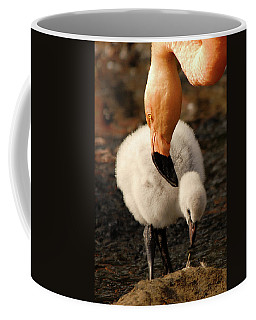 Coffee Mug featuring the photograph Mommy Love by Howard Bagley