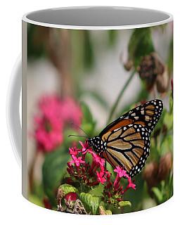 Monarch Butterfly On Fuchsia Coffee Mug