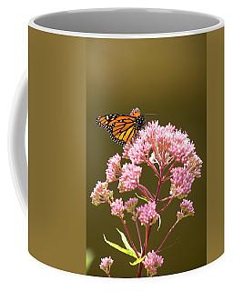 Monarch Butterfly 5 Coffee Mug