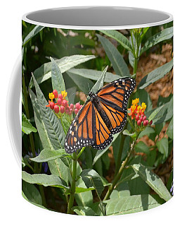 Coffee Mug featuring the photograph Monarch Butterfly by Carol  Bradley