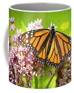 Monarch Butterfly Closeup  Coffee Mug