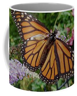 Coffee Mug featuring the photograph Monarch Butterfly by Melinda Saminski