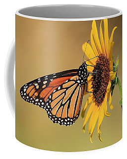 Monarch Butterfly On Sun Flower Coffee Mug by Sheila Brown
