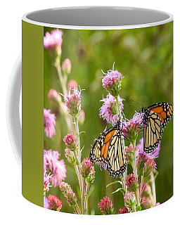 Monarch Butterfly Pair Square Format Coffee Mug