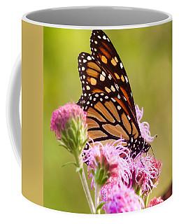 Monarch Butterfly Square Coffee Mug