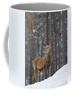 Monarch Of The Woods Coffee Mug