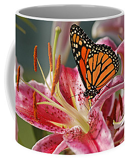 Monarch On A Stargazer Lily Coffee Mug
