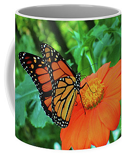 Monarch On Mexican Sunflower Coffee Mug