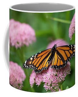 Monarch On Sedum Coffee Mug