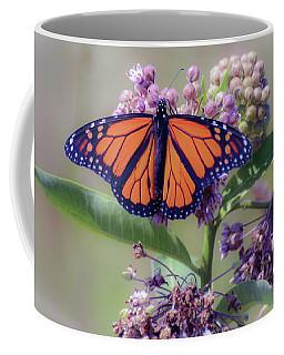 Coffee Mug featuring the photograph Monarch On The Milkweed by Kerri Farley