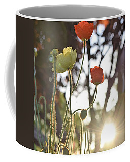 Monday Morning Sunrise Coffee Mug by John Glass