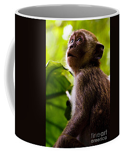Monkey Awe Coffee Mug