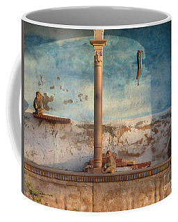 Coffee Mug featuring the photograph Monkeys At Sunset by Jean luc Comperat