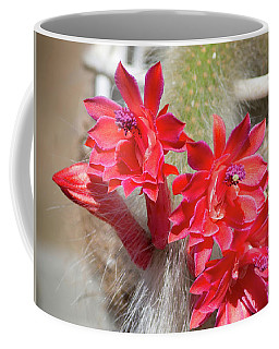 Monkey's Tail Cactus Flower Coffee Mug