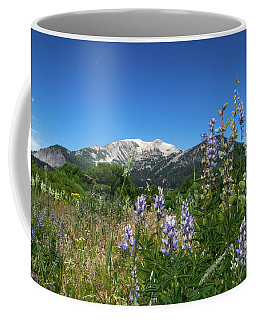 Mammoth Meadow   Coffee Mug