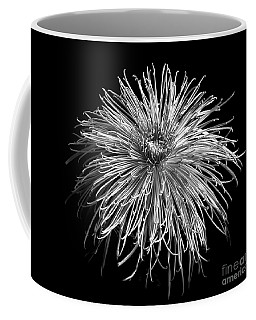 Monochrome Of Chrysanthemum 'pink Splendor' Coffee Mug