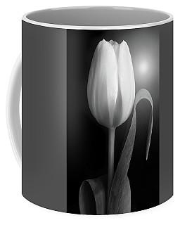 Monochrome Tulip Portrait Coffee Mug by Terence Davis