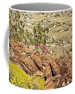 Montezuma Rd Cliff Side Flower Garden Coffee Mug