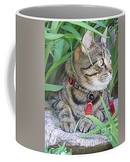 Coffee Mug featuring the photograph Monty In The Garden by Jolanta Anna Karolska