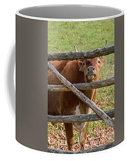 Coffee Mug featuring the photograph Moo by Bill Wakeley