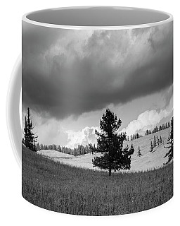 Moody Meadow, Tsenkher, 2016 Coffee Mug