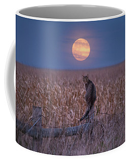 Moon Kitty  Coffee Mug