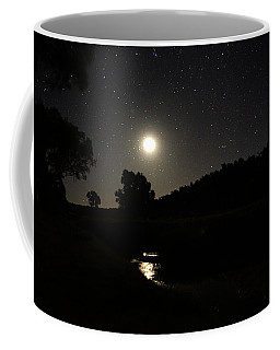 Moon Set Over Palm Valley 2 Coffee Mug