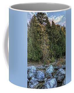Moonlight Bay Bedrock Beach Coffee Mug