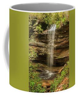 Moore Cove Falls Coffee Mug