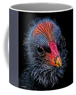 Moorhen Chick Coffee Mug