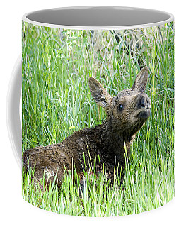 Moose Baby Coffee Mug