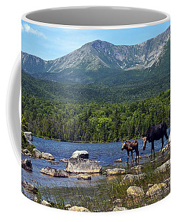 Moose Baxter State Park Maine 2 Coffee Mug