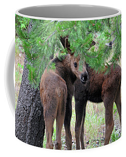 Moose Calves Coffee Mug