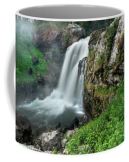 Coffee Mug featuring the photograph Moose Falls by Ronnie and Frances Howard