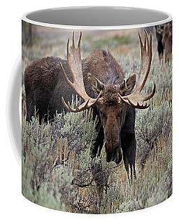 Moose In The Sage Coffee Mug