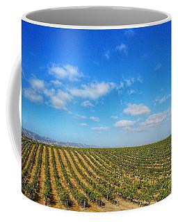 Morgan Hill Vinyard Coffee Mug